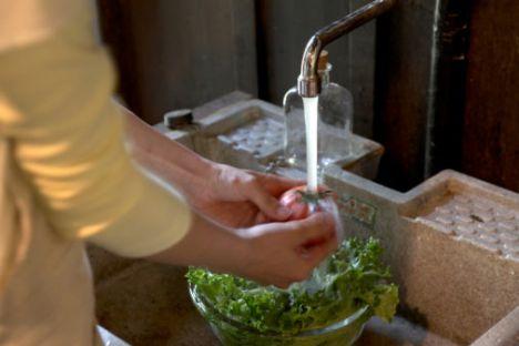 •Çiğ sebzeleri bol su ile iyice yıkayıp tüketin. •Meyveleri bol su ile yıkayıp kabukları ile yenilebilenleri kabukları ile tüketmeye özen gösterin. •Yemekleri günlük hazırlamaya ve tekrar ısıtma işlemi uygulamayın, eğer artarsa bir kereden fazla ısıtmayın. •Bütün sebze ve meyveleri buzdolabında saklayın